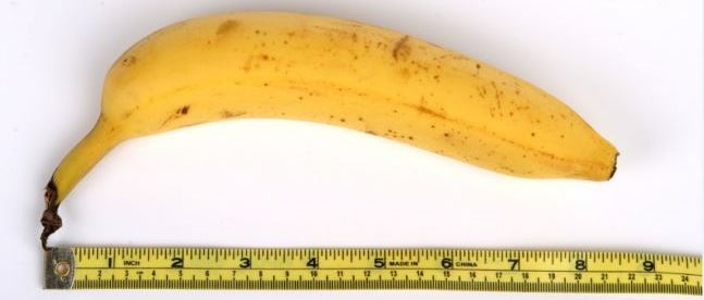 measuring banana